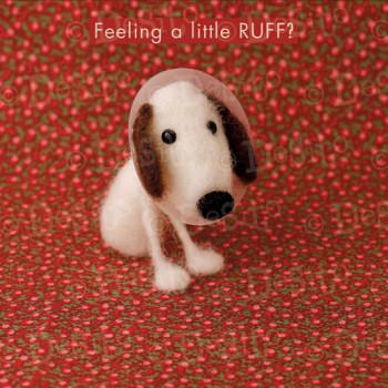 W03 feeling ruff