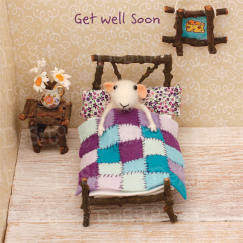 W11 get well bed