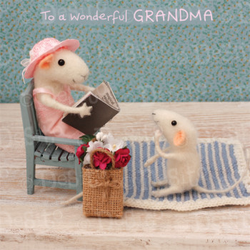 W13 grandma book
