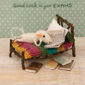 W28 exams