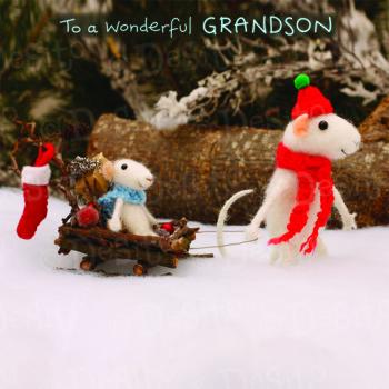 WX22 grandson sleigh